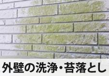 外壁の洗浄・苔落とし
