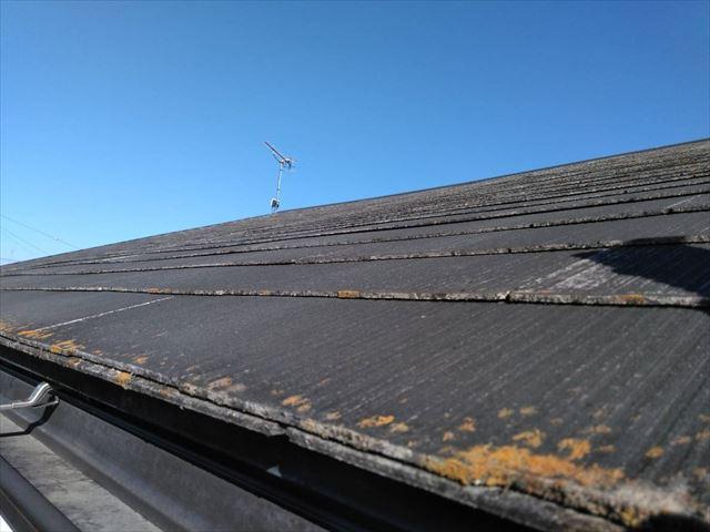 屋根の軒先にカビと苔が発生です