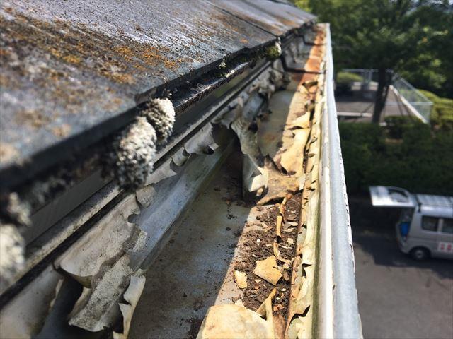 軒樋の劣化・損傷