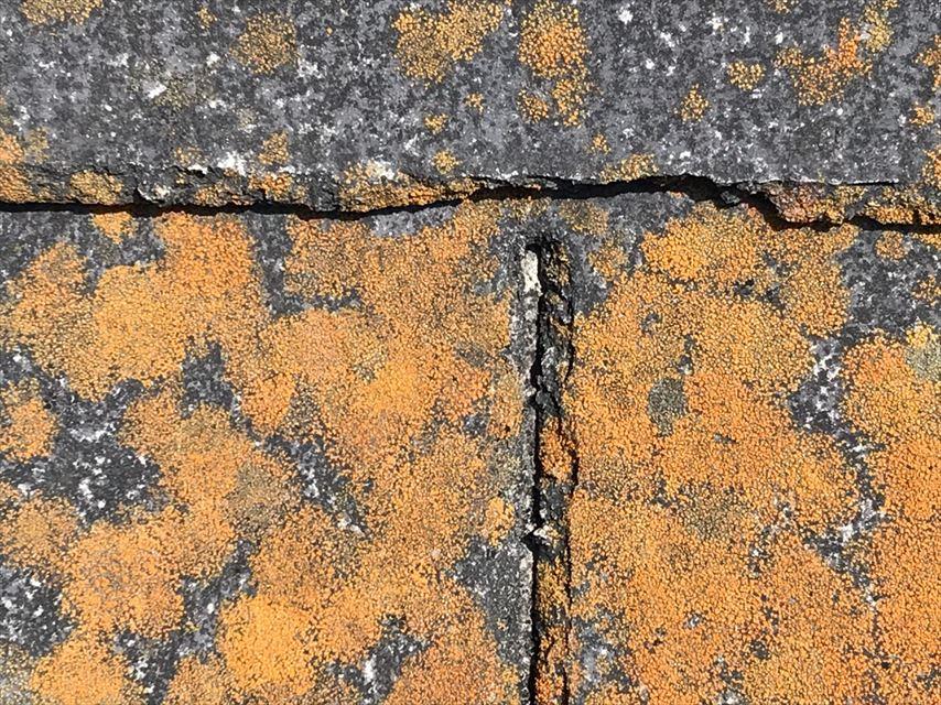 屋根 オレンジ色 苔