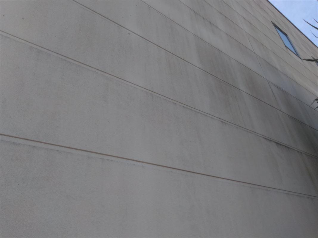 可児 外壁塗装 サイディングにリシン吹き コケの発生