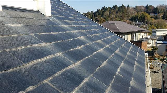 カビの生えた屋根