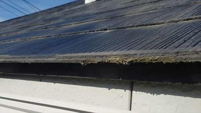 屋根の軒先にカビ