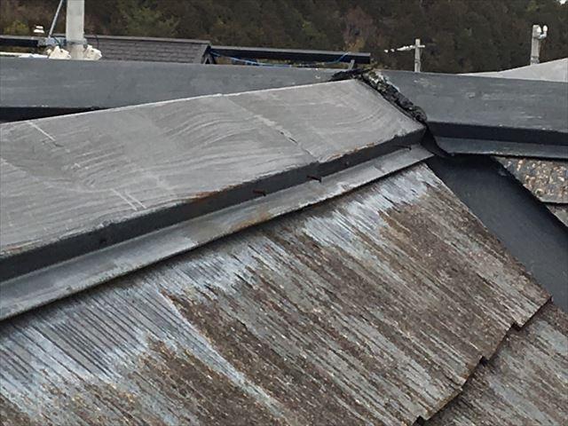スレート屋根にカビ・コケが発生